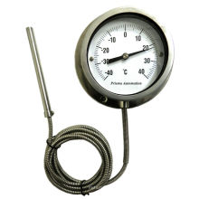 Mercury In Steel Thermometer