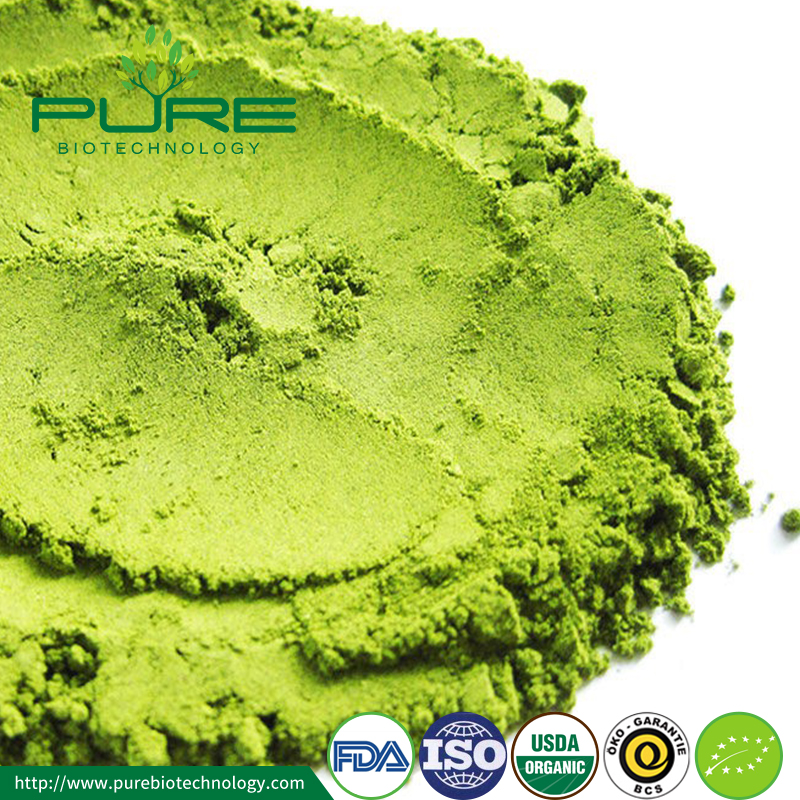 Organic Matcha Powder1
