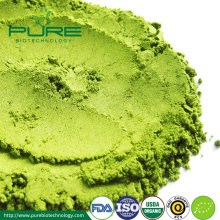 ขายส่ง Organic Matcha Powder