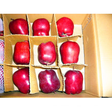 Alta calidad China Fresh Huaniu Apple