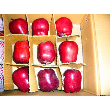 Hochwertiger China Fresh Huaniu Apfel