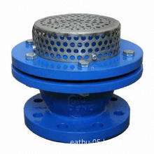 Foot Valve, Cast Iron, Flanged, PN16, Competitive Price, DN40-DN350