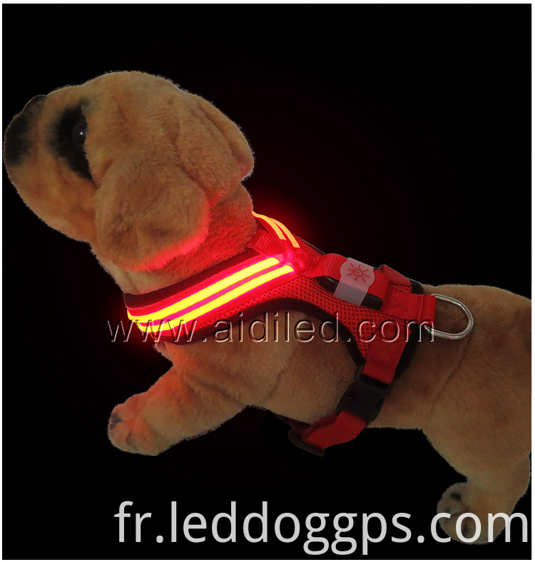 Led Dog Harness Large