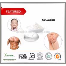 Ingredientes cosméticos 100% Pure Fish Collagen Powder