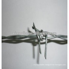 Barbed Wire(mesh)