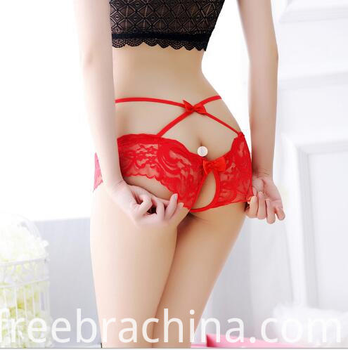 sheer lace open back t panty detail4