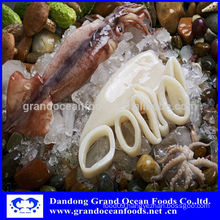 Frozen squid for sale