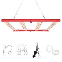 Luces LED Spydr de 4 barras de cultivo médico