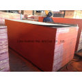 21mm*1220*2440 Brown Film Faced Plywood