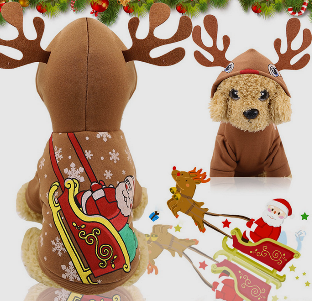 Pet Clothes for Christmas
