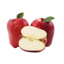 Sweet fresh huaniu apple from China Tianshui apple brand apple