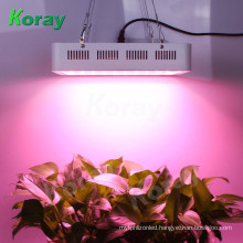 1000W Full Spectrum Professional Herb Grow Lamps LED Plant Growth Lights For Greenhouse