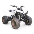 125CC ATV EPA CARRERAS QUAD BARATOS