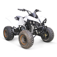 125CC ATV EPA CARRERAS QUAD BARATOS