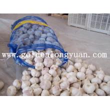 Chinesischer frischer Knoblauch mit gutem Preis und Qualität