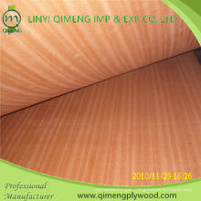 Supply AA Grade Sapele Plywood with Good Price
