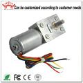 Brushless Dc 12V Gear Motor