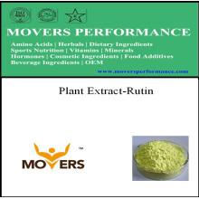 Extrato de plantas Rutina de grau NF