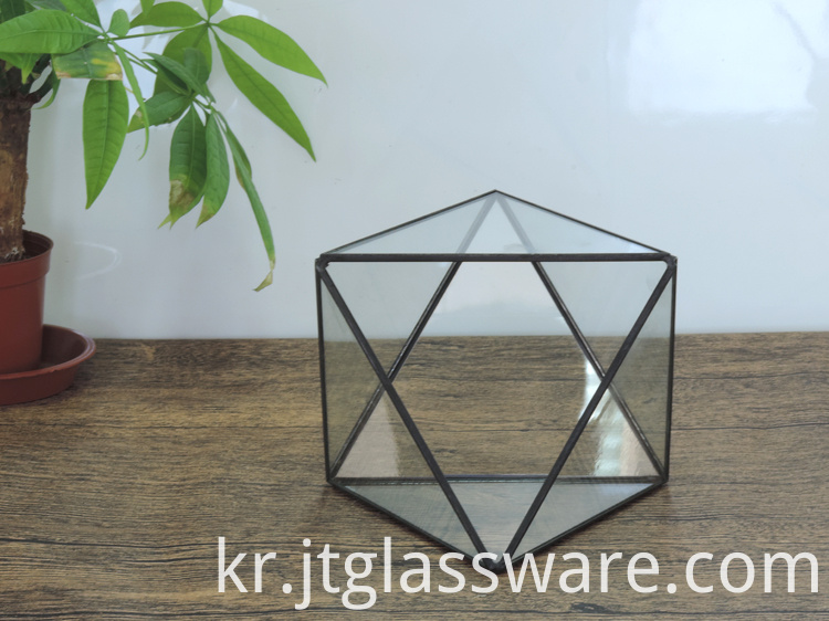 Pentagon Ball Shape Open Glass Geometric Terrarium