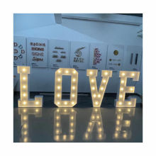 LED Light Customizable led lights for channel letters Lights LED large bulb letter signs