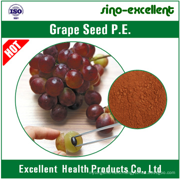 Natural Grape Seed Extract CAS No. 84929-27-1