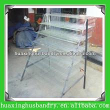 Diseño de la jaula de la codorniz del acoplamiento de alambre de la buena calidad para la venta