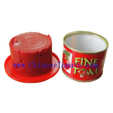 Dosen Tomatenpaste Hersteller