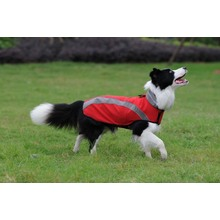 Pet Clothes Sport Dogs Wear