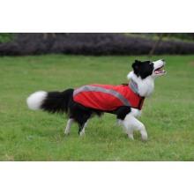 Ropa para mascotas perros deporte desgaste