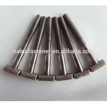 stainless steel customed T bolt