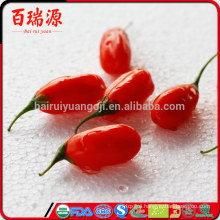 Goji berries import from factory price