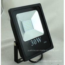 Luzes impermeáveis 30W da inundação do diodo emissor de luz com CE