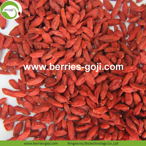 Factory Supply Torkad röd frukt Goji Berry