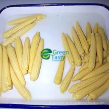 Chinesischer in Büchsen konservierter gelber süßer Mais