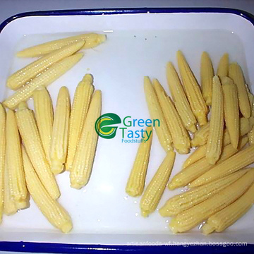 Chinese Canned Yellow Sweet Corn