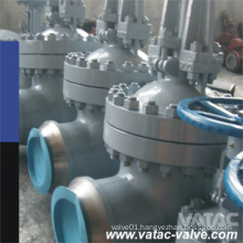 Cast & Forged Wedge Gate Valve (Z41)