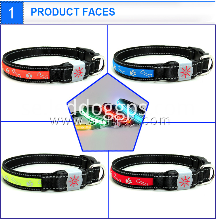 Led Dog Products