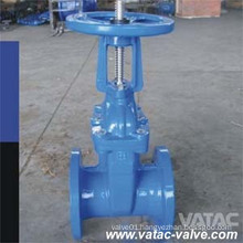 BS Std OS&Y Cast Iron Gate Valve