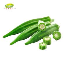 Wholesale IQF frozen okra