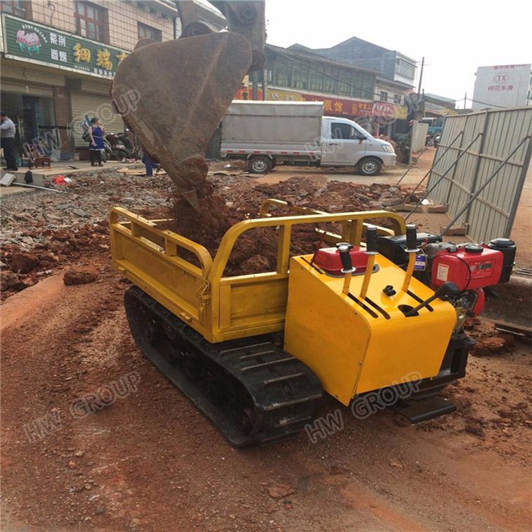 Mini Multi-function Dump Truck