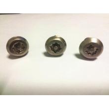Parafuso anti-roubo de aço inoxidável de alta qualidade com cabeça especial M8 * 20