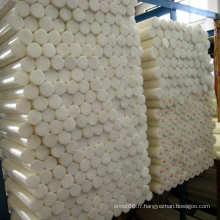 Grande feuille / tige en plastique blanche de stock de POM