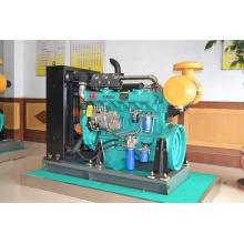 Ricardo 6 Zylinder Shandong Diesel-Motor zum Verkauf
