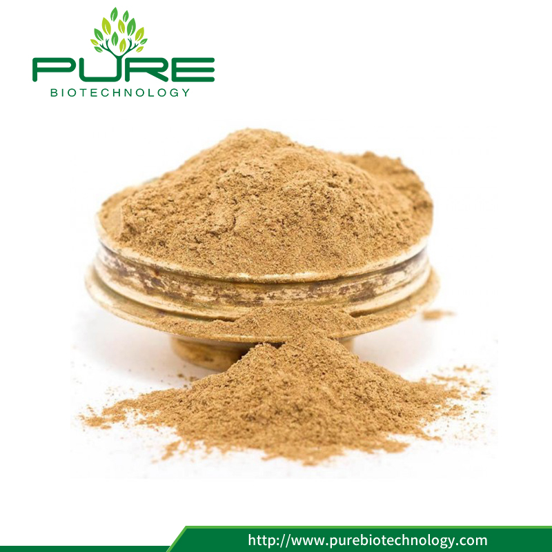 Liquorice Root Extract Powder2