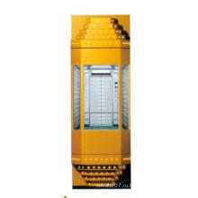 Fjzy Панорамным Дешевые Лифт-Ascensor2049