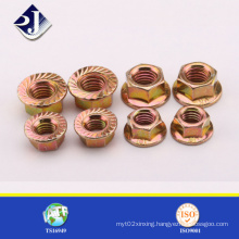 SGS Hex Flange Nut for Automobile