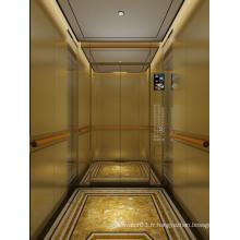 Ascenseur de passagers luxueux approuvé par le certificat GOST