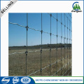 Hot Dirty Galvanized Filed Fence