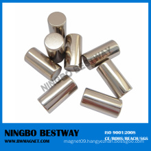 Irregular Shaped Cylinder Permanent Magnet