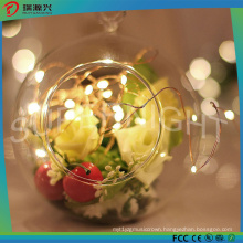 Indoor & Outdoor Christmas Holiday Decoration Colorful LED Decorative Light